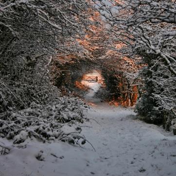 Turret Hall Road, Knott Wood, Upper Calder Valley, December 2010