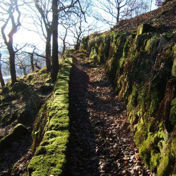 Path through Knott Wood, Upper Calder Valley, January 2011