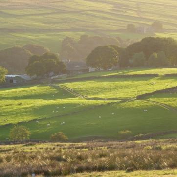 Walshaw Farm, Upper Calder Valley, September 2018